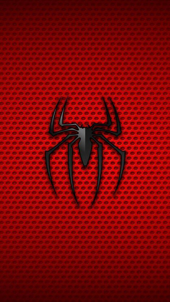 丨丶蜘蛛网